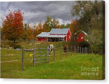 Red Horse Barn Canvas Print by Deborah Benoit