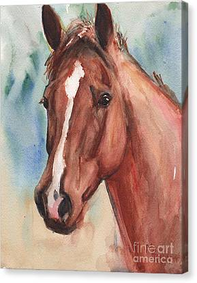 Chestnut Horse Canvas Print - Red Horse In Watercolor by Maria's Watercolor