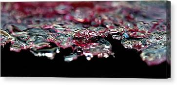 Canvas Print featuring the photograph Red Ice by Rico Besserdich