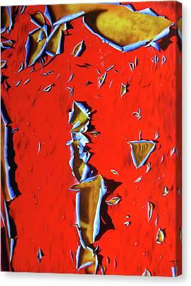 RED Canvas Print by Jurek Zamoyski
