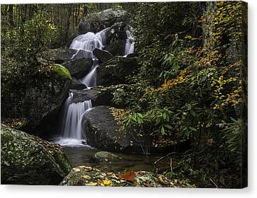 Red Leaf Waterfalls Canvas Print