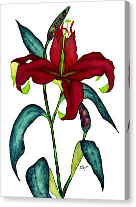 Red Lily Canvas Print by Stephanie  Jolley
