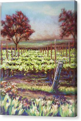 Red Maples And Dafodills Canvas Print