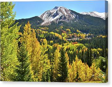 Canvas Print featuring the photograph Red Mountain Fall Color by Ray Mathis