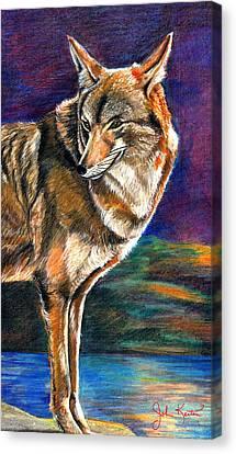 Red Mountain Wolf Canvas Print by John Keaton