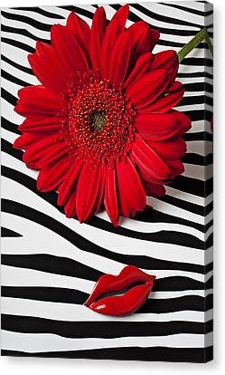 Red Mum And Red Lips Canvas Print by Garry Gay