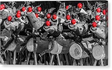 Red Noses. Canvas Print by Angela Aird