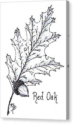 Red Oak Leaf And Acorn Canvas Print