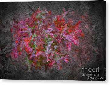 Red Oak Leaves, Grapevine Texas Canvas Print