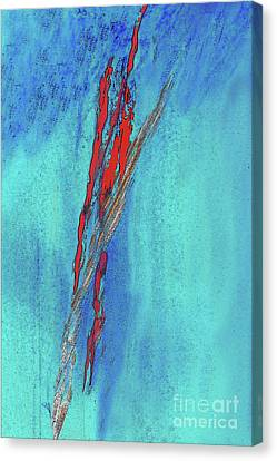 Fanciful Canvas Print - Red On Blue Abstract by Sharon Eng