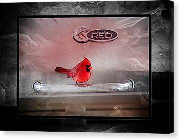 Red On Red Canvas Print by Ericamaxine Price