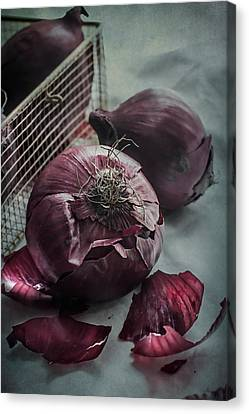 Red Onions Canvas Print by Maggie Terlecki