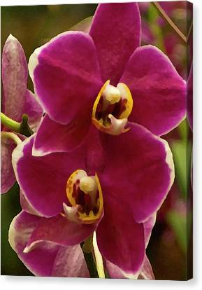 Red Orchid Canvas Print