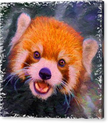 Red Panda Cub Canvas Print