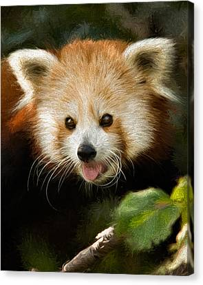 Canvas Print featuring the photograph Red Panda by Lana Trussell