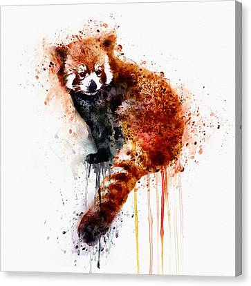 Red Panda Canvas Print by Marian Voicu
