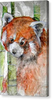 Canvas Print featuring the painting Red Panda Portrait by Debbi Saccomanno Chan