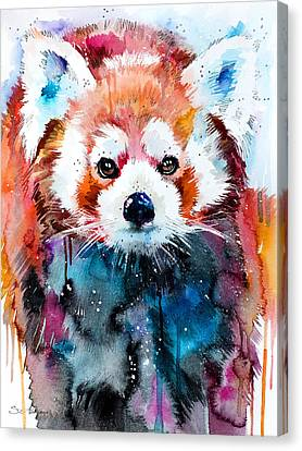 Red Panda Canvas Print by Slavi Aladjova
