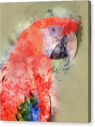 Red Parrot Digital Watercolor On Photograph Canvas Print