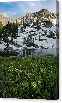 Red Peak And Willow Lake Canvas Print by Aaron Spong