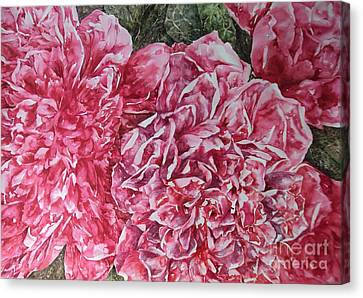 Red Peonies Canvas Print