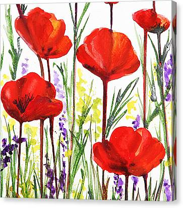 Red Poppies Watercolor By Irina Sztukowski Canvas Print by Irina Sztukowski