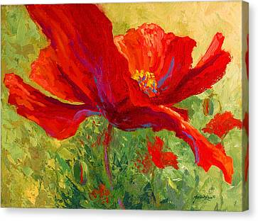 Red Poppy I Canvas Print