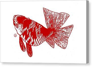 Red Ranchu Canvas Print by Shih Chang Yang