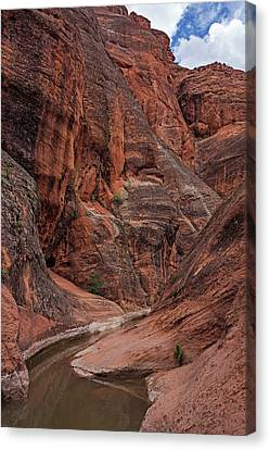 Red Reef Slot Canyon Canvas Print by Loree Johnson