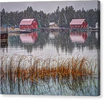 Red Reflection Canvas Print