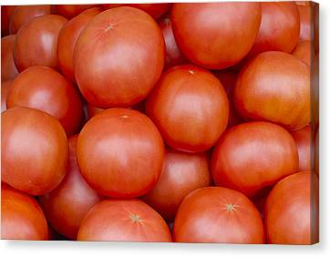 Red Ripe Tomatoes Canvas Print by John Trax