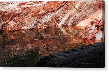 Red River Canvas Print by Donna Blackhall