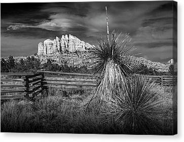 Canvas Print featuring the photograph Red Rock Formation In Sedona Arizona In Black And White by Randall Nyhof