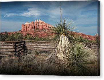 Canvas Print featuring the photograph Red Rock Formation In Sedona Arizona by Randall Nyhof
