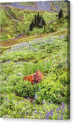 Canvas Print featuring the photograph Red Rock Of Rainier by Pierre Leclerc Photography