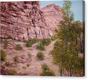 Red Rock Trail Canvas Print by Roseann Gilmore