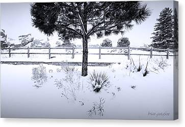Red Rocks In Black And White Canvas Print by Brian Gustafson