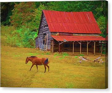 Red Roof Canvas Print - Red Roof Barn by Lisa Bell