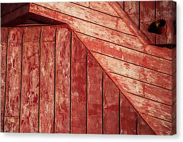 Red Roof Canvas Print by Karol Livote
