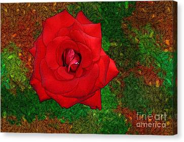 Red Rose 2 Canvas Print by Jean Bernard Roussilhe