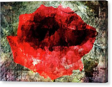 Red Rose Canvas Print by Andrea Barbieri