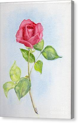 Red Rose Canvas Print by Doris Blessington
