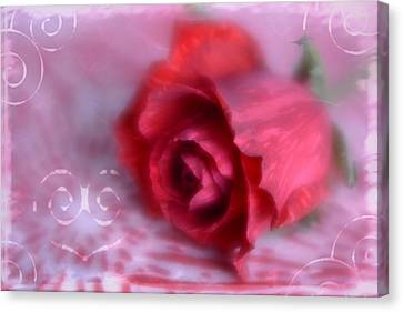 Canvas Print featuring the photograph Red Rose Love by Diane Alexander