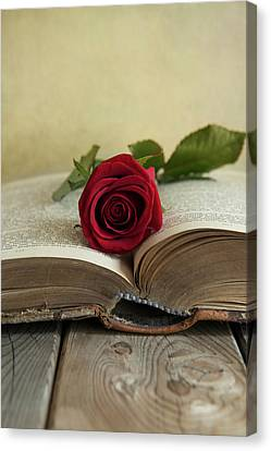 Red Rose On An Old Big Book Canvas Print by Jaroslaw Blaminsky