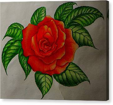 Red Rose Canvas Print by Ron Sylvia