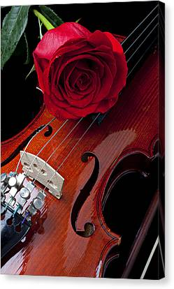 Red Rose With Violin Canvas Print