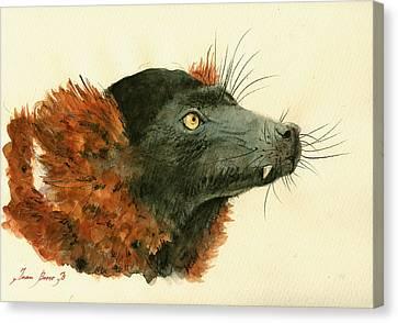 Red Ruffed Lemur Canvas Print by Juan  Bosco