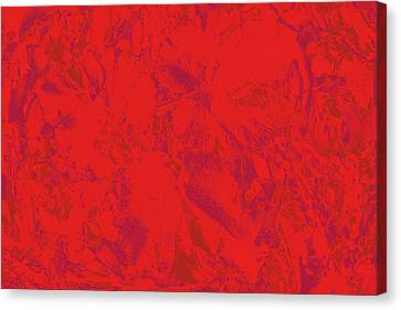 Canvas Print featuring the photograph Red Rules by Nareeta Martin