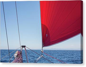 Canvas Print featuring the photograph Red Sail On A Catamaran by Clare Bambers