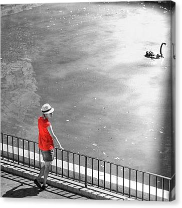 Red Shirt, Black Swanla Seu, Palma De Canvas Print by John Edwards